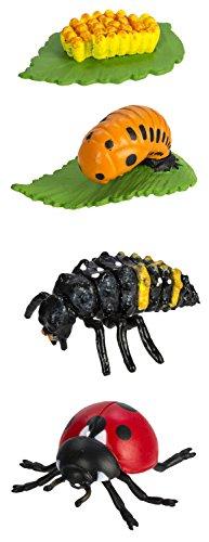 Toob Lebenszyklus eines Marienkäfers, Miniatur-Figuren