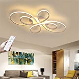 Luz Techo Dormitorios Plafon LED Diseño Lamparas de Techo Modernas Minimalista Para Comedor Regulable Iluminación de acrílico de metal Dormitorio Cocina Lámpara,White color,L100*W58*H8.5cm