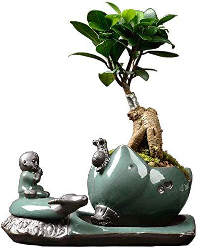 ZXL Creatieve Auspicious Thuis Ambachten Creatieve Persoonlijkheid Ge Yao Keramische Potten Eenvoudige Groene Roland Gras Plant Gepot Huis Binnen IKEA Art Pot