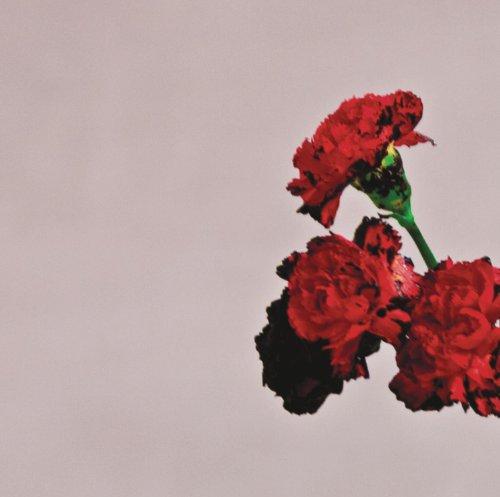 Love In The Future(Deluxe)