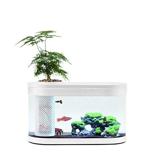 MINGMIN-DZ Dauerhaft Geometrie-Fisch-Behälter Aquaponics Ökosystem Kleiner Wasser-Garten ökologisches Aquarium Aquarium Transparent Aquarium
