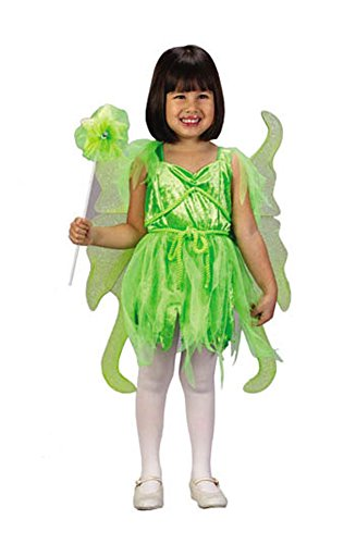 Halloween FX Fairy Neverland Toddler Costume (3T-4T)