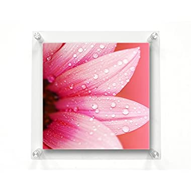 Wexel Art 23x23-Inch Double Panel Clear Acrylic Floating Frame with Silver Hardware for Up to 20x20-Inch Art & Photos