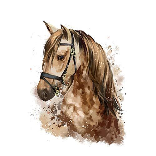 GKJRKGVF Paard DIY Schilderen Door Getallen Dieren Kit Kleurplaten Door Getallen Wall Art Foto Acryl Verf Op Canvas Home Decor