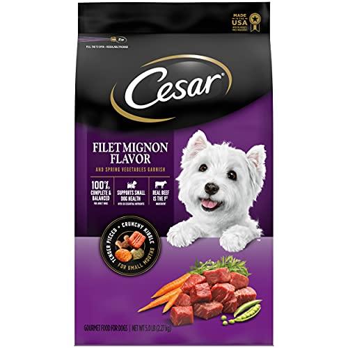 CESAR Small Breed Dry Dog Food Filet Mignon Flavor with Spring Vegetables Garnish Dog Kibble, 5 lb. Bag