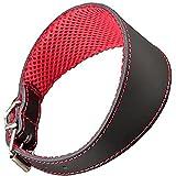 Arppe 195374535100 Collar Galgo Cuero Forro 3D Amazone, Negro y Rojo