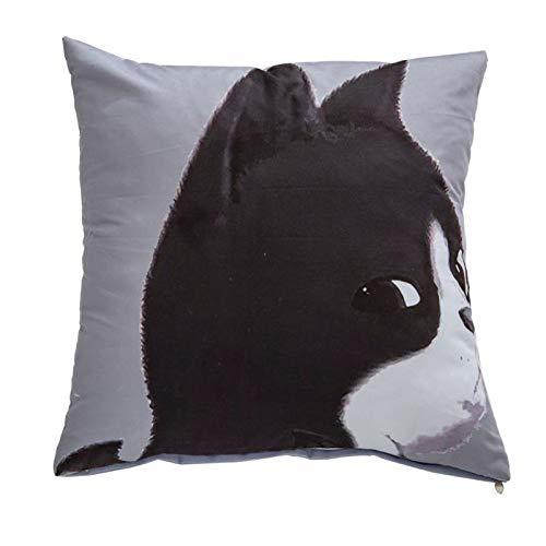 XIEPEI Cartoon Kissen Sofakissen Büro Kissen Bett Rückenlehne Auto Taille Kissen. Kaninchen 40cm*40cm