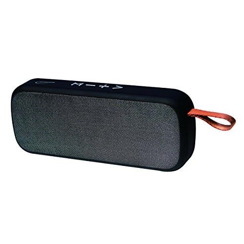 Typhoon TM041 Kabelloser Bluetooth (V. 4.2) Lautsprecher mit FM Radio, Speicherkarten Slot (Micro SD) und AUX Anschluss, Freisprechfunktion Schwarz