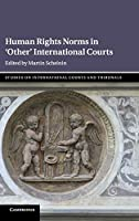 Human Rights Norms in 'Other' International Courts (Studies on International Courts and Tribunals)