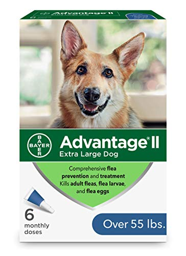 Advantage II 6-Dose Flea Prevention for Extra Large Dogs, Flea and Lice Treatment for Extra-Large Dogs Over 55 Pounds