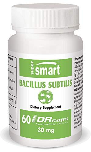 Bazillus subtilis 30 mg - 60 DRCaps - probiotischen und Präbiotika
