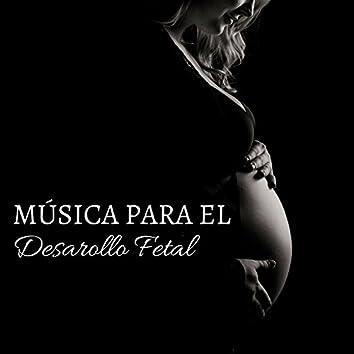 Música para el Desarollo Fetal - La Mejor Música para Estimular la Inteligencia del Bebe en el Vientre Materno
