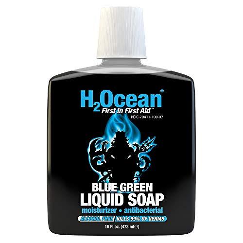 16oz Blue Green Liquid Soap