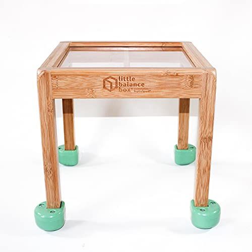 Product Image of the Little Balance Box 2-in-1: No Wheels Spring Feet, Girl Boy Baby Walker Push...