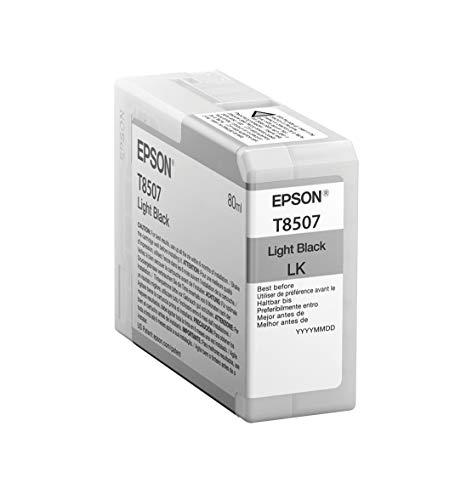 Epson T850700 T850 UltraChrome HD Light Black Ink