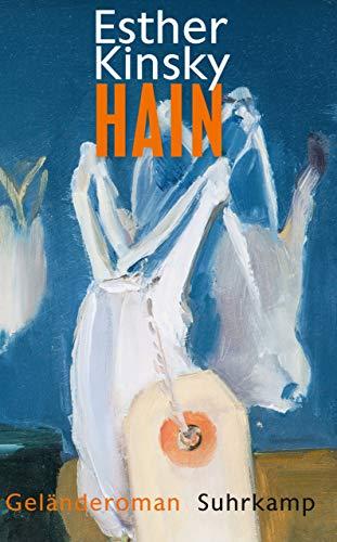 Hain: Geländeroman (suhrkamp taschenbuch)