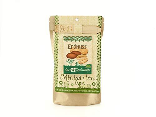 Die Stadtgärtner Minigarten Erdnuss | Komplettes Anzuchtset für leckere Erdnüsse | Gesiebte Erde, bestes Saatgut & eine ausführliche Anleitung