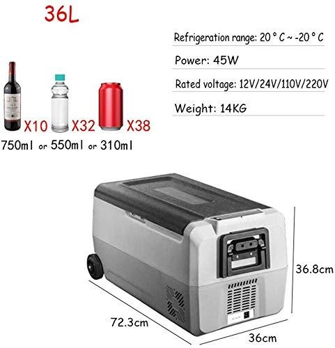 nevera 60 litros fabricante ZQALOVE