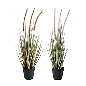 22 Inches Artificial Potted Plants, Set of Two Artificial Potted Plants, Pink dogtail Grass and Yellow dogtail Grass. Artificial Plants for Home & Office Decor.