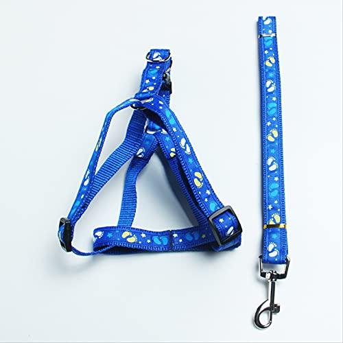 Correa de perro para mascotas con correa de pecho para perros grandes, medianos y pequeños, ancho 1,5 x 120 cm, azul marino