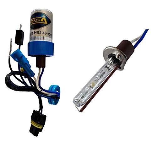 VEGA 1 Ampoule HID Xénon Marque Francaise H1 10000K 55W à embase coudée Haut de Gamme