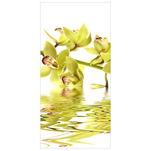 Apalis Panel japones Elegant Orchid Waters 250x120cm | Paneles japoneses separadores de ambientes Cortina Paneles japoneses Cortina Cortinas | Tamaño: 250 x 120cm sin Soporte