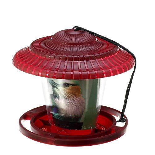 ZXY Comedero para Pájaros Al Aire Libre Comedero De Aves Silvestres Se Puede Colgar En Jaulas, Jardines, Exteriores, Etc. para Facilitar Su Transporte,Rojo