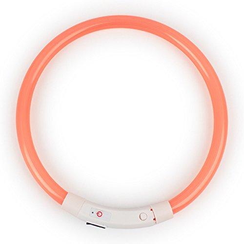Zehui–USB Batería LED collar de perro impermeable luz de cuello, noche seguridad Glowing mascota collares, para pequeño/mediano/Perros grandes