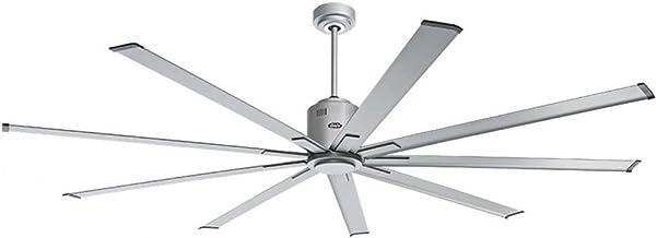 CASAFAN Big Smooth eco Ventilateur de Plafond Basse consommation TS 224 cm