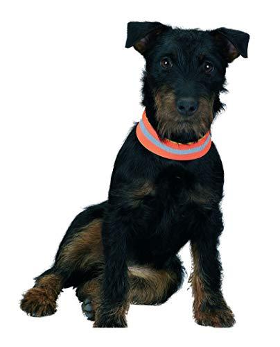 FARM-LAND Hunde-Signalband, wendbar Hundehalsung Hundewarnhalsung (38 cm)