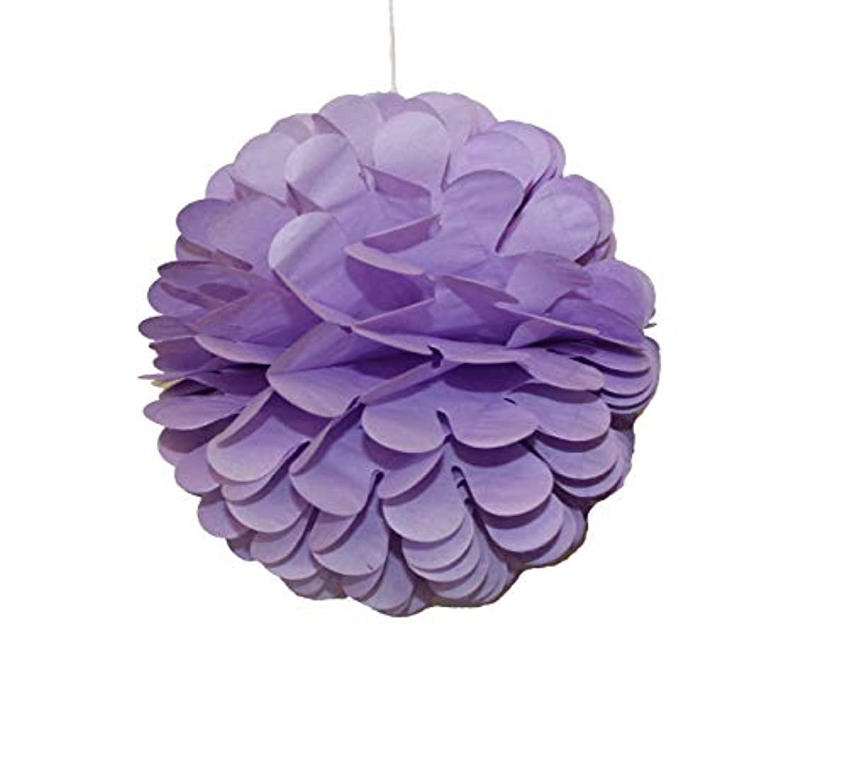 Dailygo 10Pcs 8 inch Party Honeycomb Balls Art Hanging Pom Poms Tissue Paper Balls Wall Backdrop Decoration Party Design Flower Balls Party Wedding Birthday Nursery Home Baby Shower Decor (Purple)