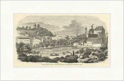 Kunstdruck Sigmaringen Haupt und Residenzstadt von Hohenzollern Baum Fahne Holzstich E 7737