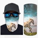 Bufanda mágica de caballo de cielo para el cuello polaina bandanas para hombres y mujeres ropa de mano para montar al aire libre pulsera UV Sunburn diadema decoraciones blanco onesize