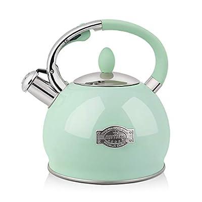 RETTBERG 2.64-Quarts Tea Kettle for Stovetop Food grade stainless steel Teapot with Ergonomic Handle(Mint Green) from RETTBERG