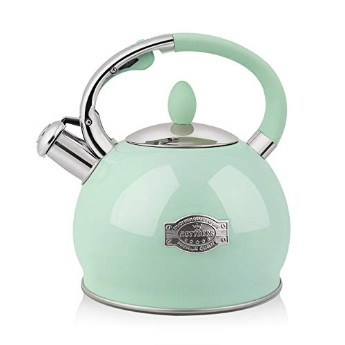 RETTBERG 264-Quarts Tea Kettle for Stovetop Food grade stainless steel Teapot with Ergonomic Handle1 Free Heat-Resistant Cotton Glove Mint Green