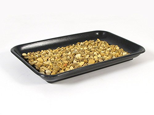 Eve's Bonsai Humidity Drip Tray 6' x 9' with Pebbles Eco Friendly Material,Stronger, More Durable, classier Than Plastic Trays Overall Size 6'x9' to fit a 4.5'x7.75' on The Bottom of Your Pot