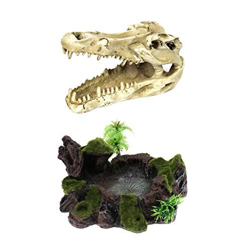 B Blesiya Reptilien Futterschale Futternapf Wassernapf + Krokodil Schädel Höhle Terrarium Dekoration