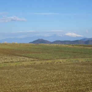 『JA全農長野 信州そらまめ農園高見澤さんちのにんにくみそ 200g×3個』の2枚目の画像