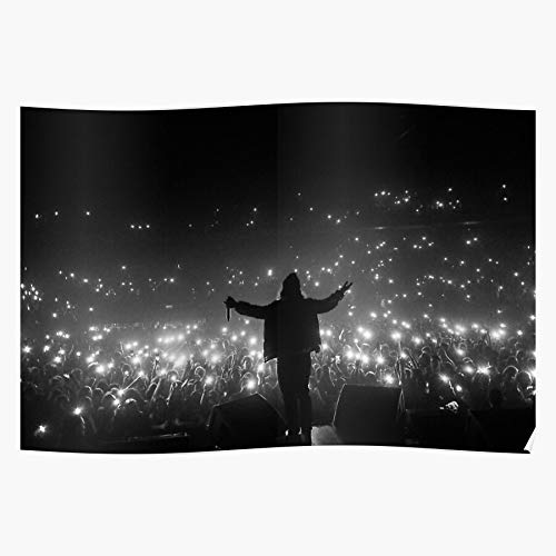 Wolf Really Russ Music Style Cool A Perfomance Concert Theres Diemon Regalo para la decoración del hogar Wall Art Print Poster 11.7 x 16.5 inch