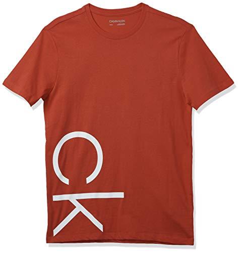 Calvin Klein Men's Athleisure Logo Crewneck T-Shirt, POINSETTA, Medium