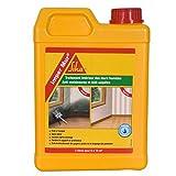 Traitement anti moisissure pour les murs humides
