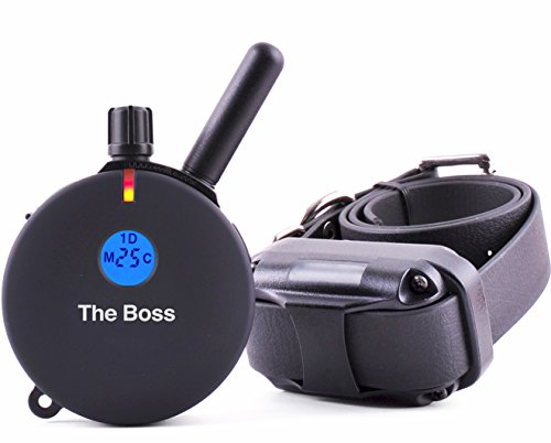 Educator ET-800 Remote Dog Training Collar