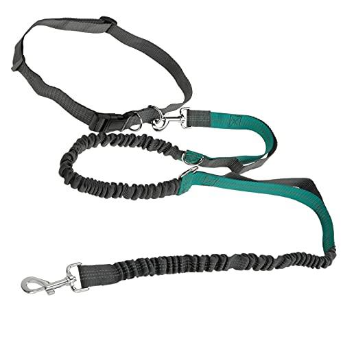 PrimeMatik - Correa Ajustable para Perros de Jogging 160-220 cm. Correa Manos Libres elástica y Reflectante con cinturón
