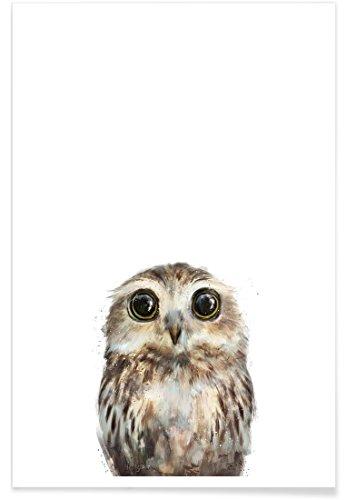 """JUNIQE® Kinderzimmer & Kunst für Kinder Eulen Poster 40x60cm - Design """"Little Owl"""" entworfen von Amy Hamilton"""