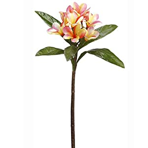 22″ Frangipani Plumeria Silk Flower Stem -Pink/Yellow (Pack of 12)