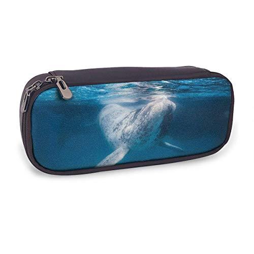 Estuche Escolar de Gran Capacidad,Ballena Animal Mundo Submarino,Bolsa de Lápiz Organizador para Material Papelería con Cremallera Doble