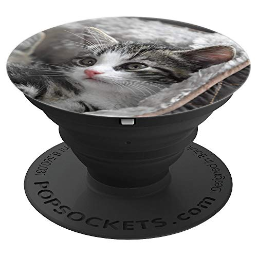 graue Katze Cat Katzenbesitzer Katzenliebhaber & Katzenbaby - PopSockets Ausziehbarer Sockel und Griff für Smartphones und Tablets