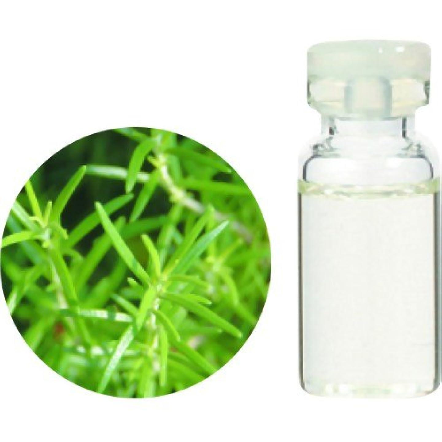 楽観頬骨第二に生活の木 Herbal Life Organic ローズマリー?シネオール 10ml
