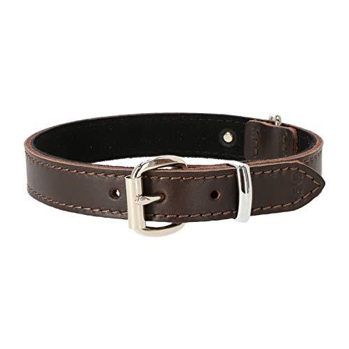 Dingo Hundehalsband aus weichem Leder mit Futter,gewachstem Leder Soft 30 mm x 65 cm Braun 11231