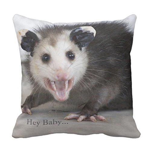 Emvency Throw Pillow Cover Funny Bachelor Pad Opossum Decorative Pillow Case Home Decor Square 18 x 18 Inch Cushion Pillowcase